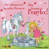Barbara Zoschke: Hier kommt Ponyfee (12): Das Geheimnis des magischen Brunnens